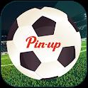 Pin-Sport icon