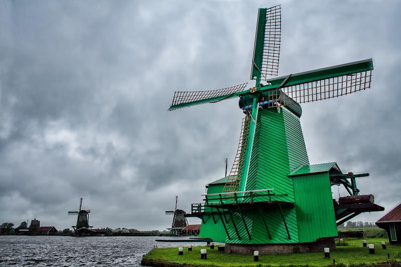 Verde Olanda di Gianluca Presto