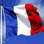 Drapeau de la France Icon