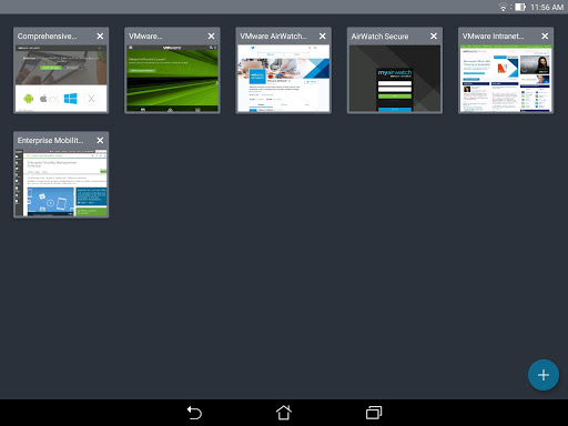 VMware Browser 6.11.0.27 screenshots 8