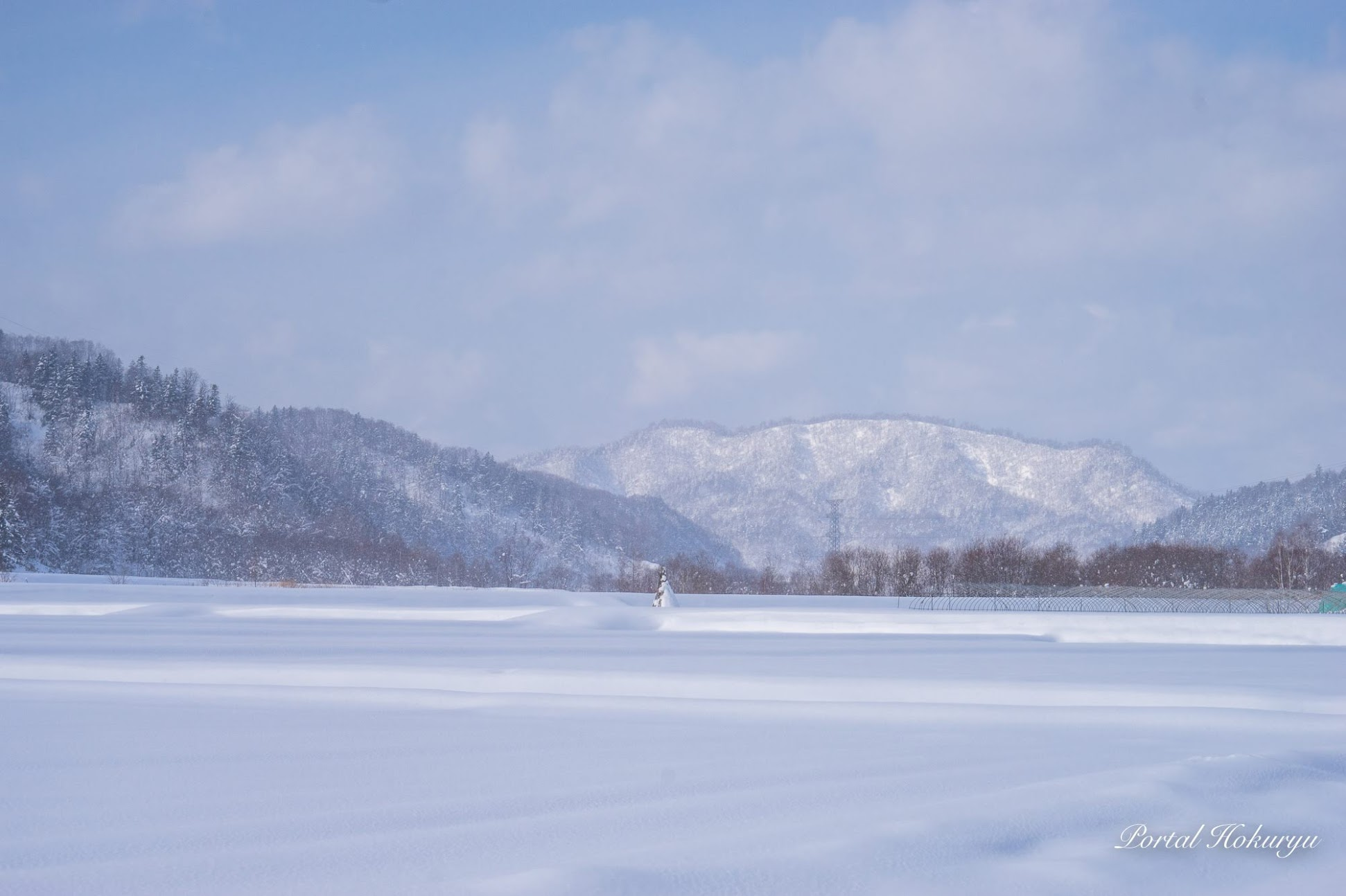 生クリームをデコレートしたような雪景気