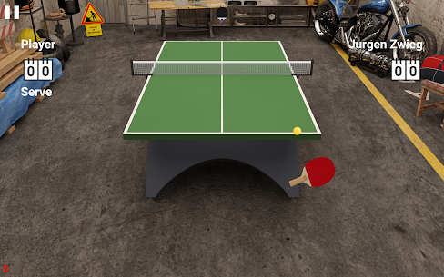 Virtual Table Tennis 10
