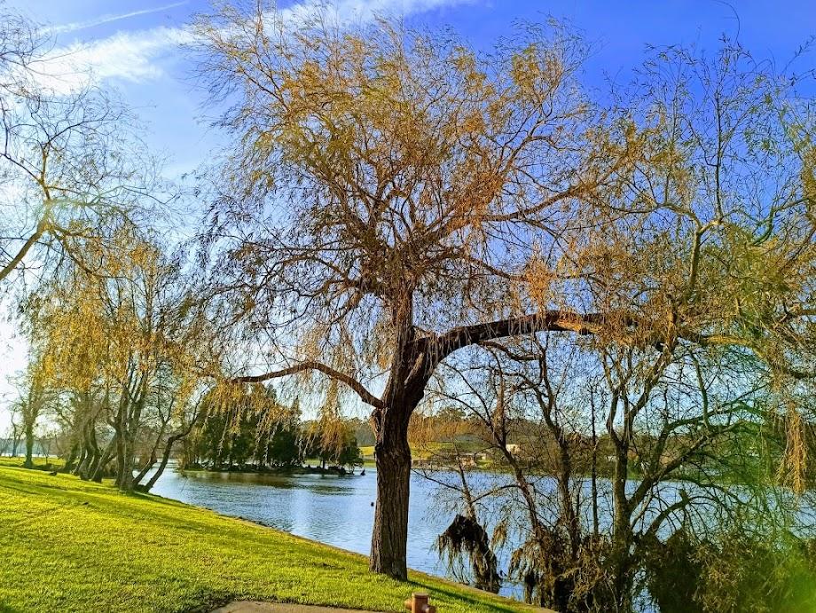 Foto Parque de Lazer do Castelinho 10