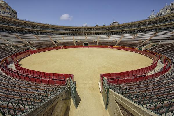 L'Arena di Domenico Cippitelli