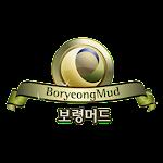 Boryeongmudmsia.com.my Icon