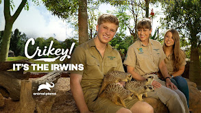 Crikey! It's the Irwins thumbnail