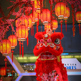 My Lion Dance by Eeezam Mon - Public Holidays New Year's Eve