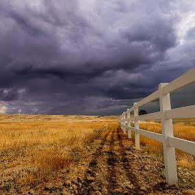 Millville Plains by Becca McKinnon - Landscapes Prairies, Meadows & Fields ( clouds, field, fence, shasta, sky, redding, plains, storm, millville, plain, millville plains )