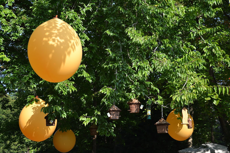 baloons di Akidebi