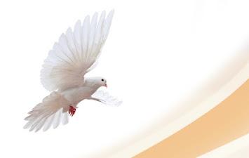 Weltfriedensgebetstag.jpg