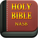 Bible (English, KJV,offline) APK