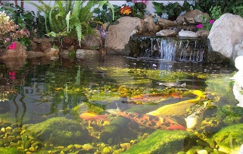 Unique fish pond design android apps on google play for What fish should i put in my pond