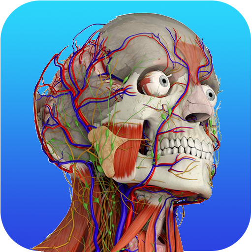 App Insights Grays Anatomy Atlas Free Offline Apptopia