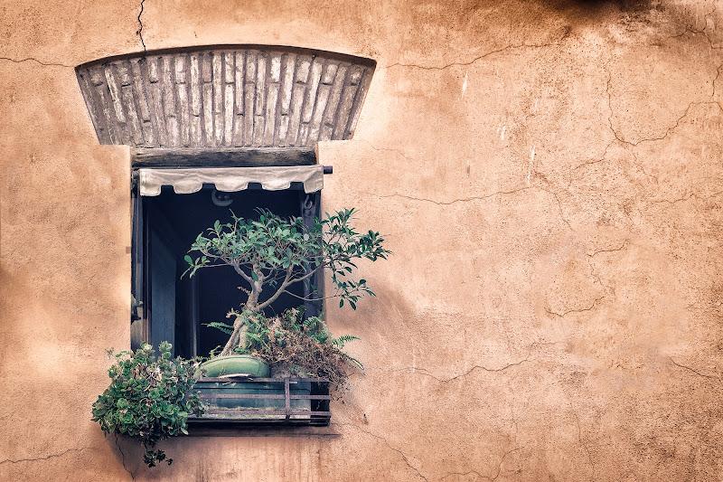 Window di amedeozullojr