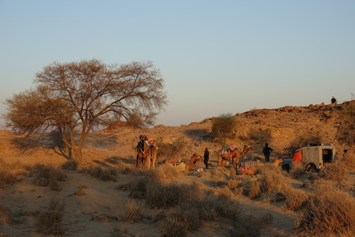 India. Rajasthan Thar Desert Camel Trek. Meeting the crew.