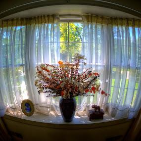 Through the Window by Chip Bolcik - Artistic Objects Other Objects ( pwcdetails, through the window )