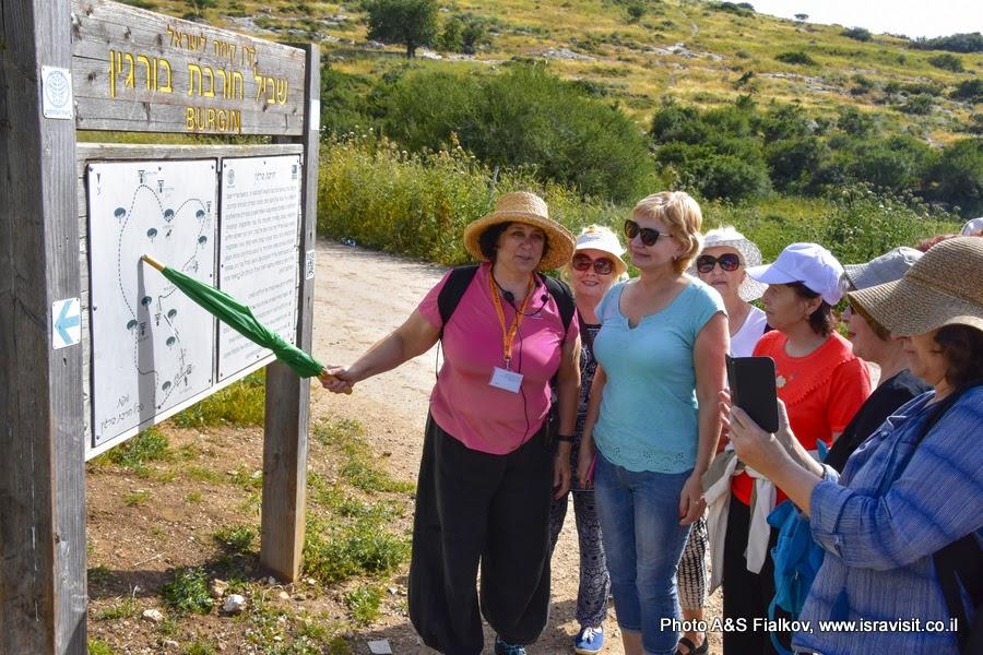 Пешеходный маршрут  Хирват Бургин в парке Адулям. Экскурсия гада в Израиле Светланы Фиалковой.