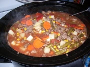 Zesty Hamburger Soup Recipe
