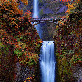 Multnomah Falls by Scott Wood - Landscapes Travel ( oregon, columbia, gorge, fall, multnomah, river,  )
