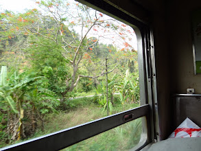 Photo: Paysage en train entre Physanulok et Lampang