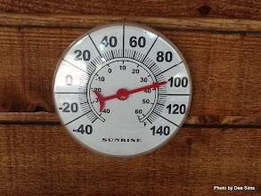 Photo: (Year 3) Day 34 - It Is This Hot