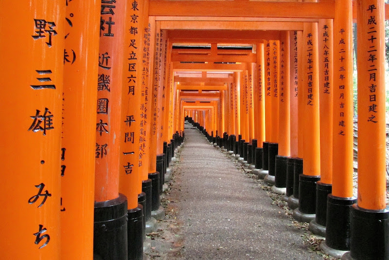 The Orange Pathway di Fos