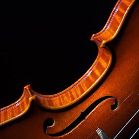 A violin by Petar Shipchanov - Artistic Objects Musical Instruments ( violin, violin ribs, f, instrument, fingerboard, neck, c-ribs, hole, music, musical instrument, strings, grif, wood, bridge, ribs, f-hole, flash )