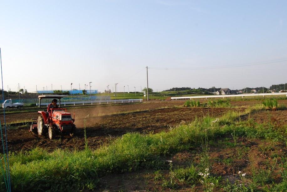 トラクターは力がいらないので、女性向けの農業機械です