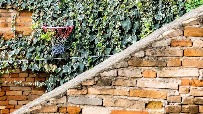basket di fabbra77
