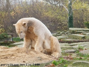 Photo: Der Sandhaufen wird untersucht ;-)
