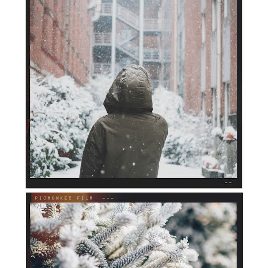 Snowy Boughs - Instagram Post Template