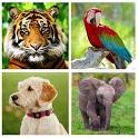 Звуки Животных - Животные для детей. icon
