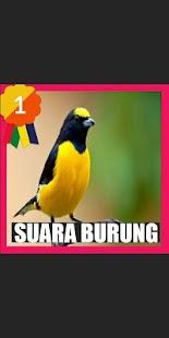 Suara Burung Betina - náhled