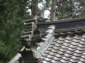 手水舎の屋根