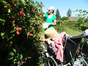 Photo: Lynne and Aimee picking raspberrires