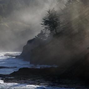 Sun Rays Boiler Bay by Bill Waterman - Landscapes Beaches ( fog, waves, sunrays, forest, ocean, beach, sunrise, seascape, landscape, rocks, ocean view )