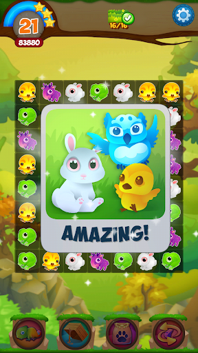 森の狂乱|玩解謎App免費|玩APPs
