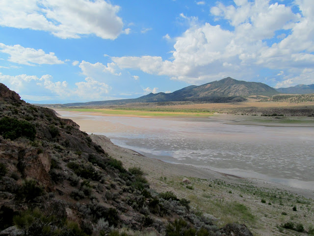 Mud flat near Painted Rocks