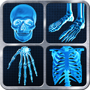 X-Ray Full Body Prank for PC and MAC
