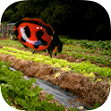 Insects & Organic Gardening icon