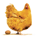 Poultry Farm Revenue Calc icon