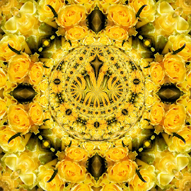Mandelbrot Roses by Ron Meyers - Digital Art Abstract
