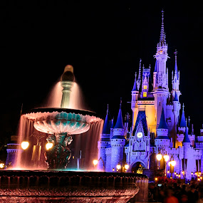 Cinderellas Castle by Jeff McVoy - Buildings & Architecture Public & Historical ( water, lights, amusement park, magic kingdom, fountain, theme park, night, castle, disney, cinderella, nightscape )