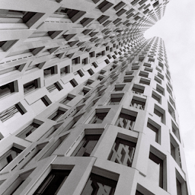 Perspektiva by Adrian Popescu - Buildings & Architecture Office Buildings & Hotels ( analog, analogic, exterior, pattern, black&white, 35 mm, film, grain, detail, building, architecture )