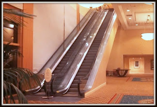 Photo: Can these be the stairs that take you to the Ice Breaker and Gala Dinner ? ... They were in 2007 at Joe Agresti's National Convention