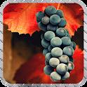 Grape Wallpaper icon