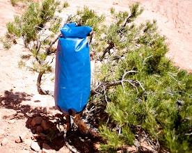 Photo: Our Torah travels in a dry bag, and hangs on a (non-burning) bush.  This Torah has been rad on top of 14,000 foot peaks, at the base of the Grand Canyon, and of course, in Moab, Utah.