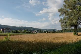 Photo: Robi się naprawdę ładna pogoda. Zatrzymuję się w moim ulubionym miejscu nad rzeką Moravą. Szkoda, że nie mam piwa ;)...