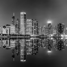 Chicago Skyline in BW by Dmitriy Andreyev - Black & White Buildings & Architecture