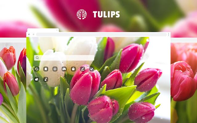 Tulips Flowers HD Wallpaper New Tab Theme